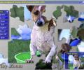 Jigtopia Jigsaw Puzzle Screenshot 0