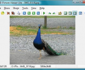 AD Picture Viewer Lite Screenshot 0