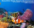 Beautiful Deep Ocean Screenshot 0