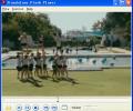 Standalone Flash Player Screenshot 0