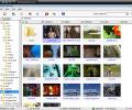 MovieShop Browser Screenshot 0
