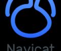 Navicat for PostgreSQL (Linux) - the best GUI database administration tool Screenshot 0