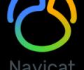 Navicat Premium (Linux) - the best GUI database administration tool Screenshot 0