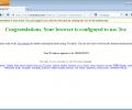 Tor Browser Screenshot 9